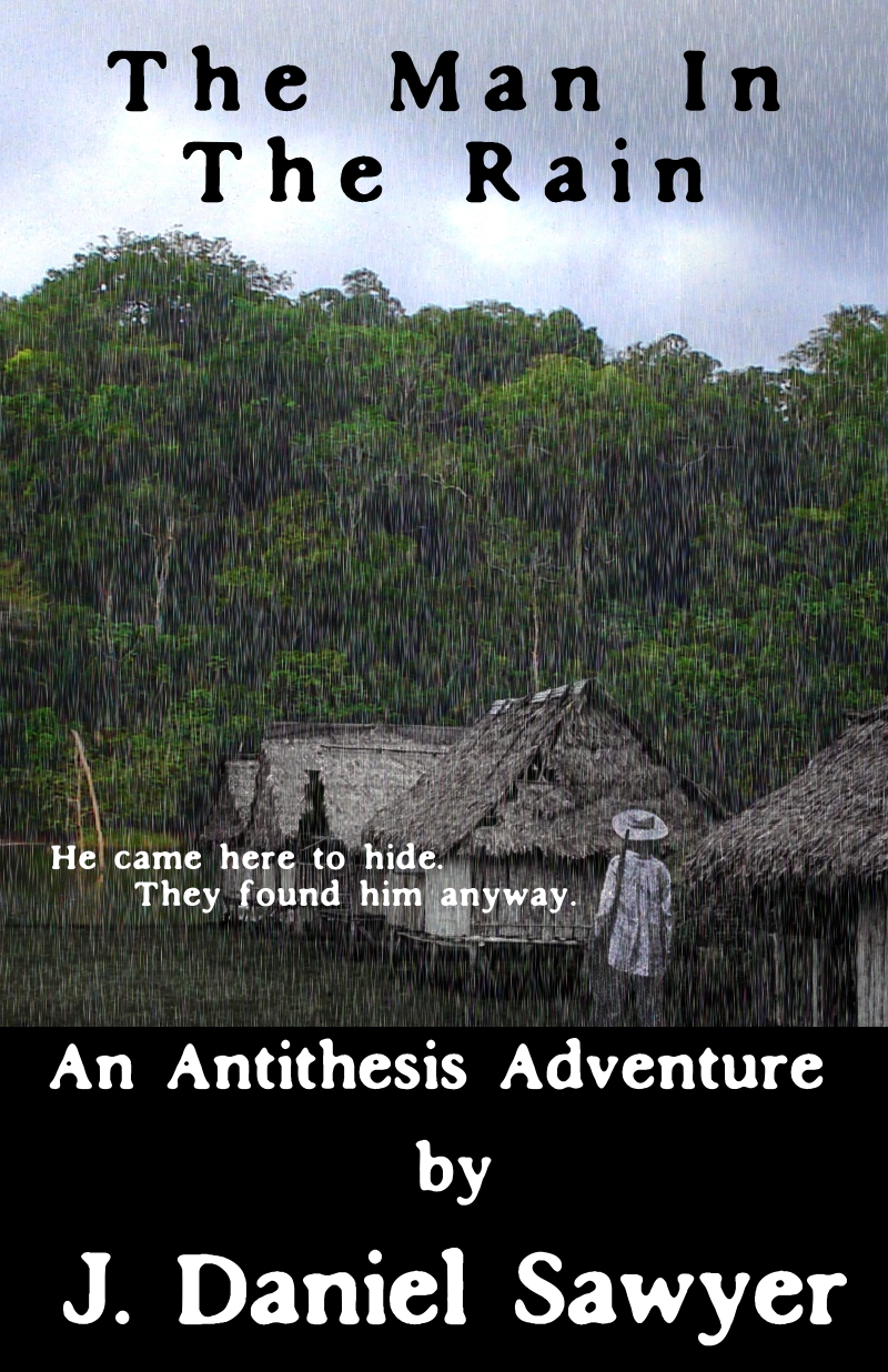 The Man in the Rain cover